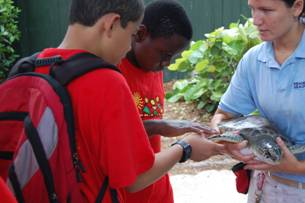 STAR students touch a sea turtle.