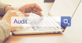 Website Audits